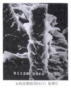 硅烷偶联剂处理